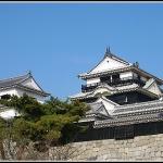 【四国・松山】3/1-3/3 講習会開催します!